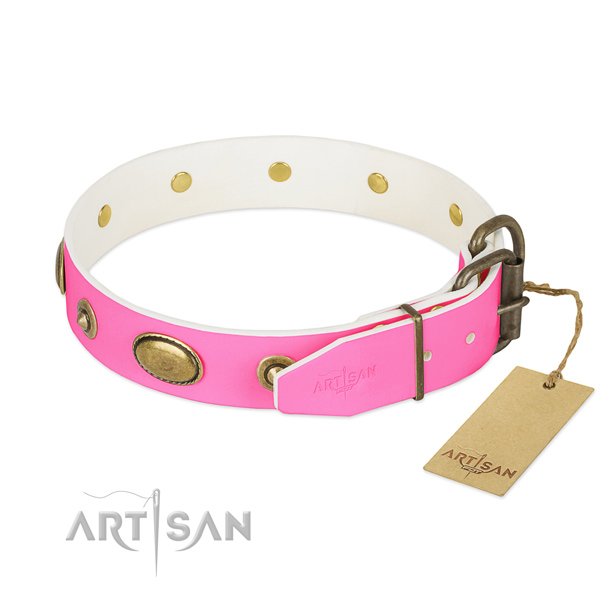 Rust-proof traditional buckle on genuine leather dog collar for your dog