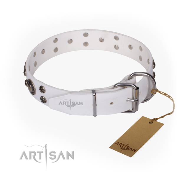 Daily use studded dog collar of durable leather