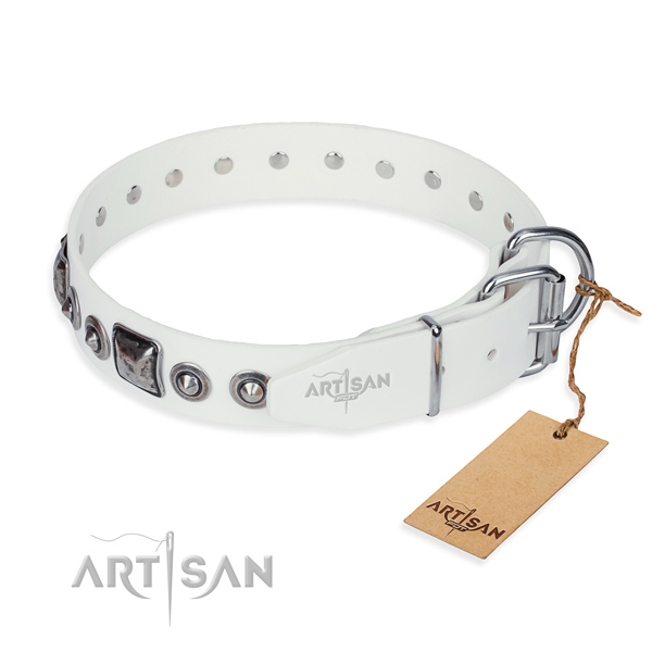 Top notch full grain natural leather dog collar made for basic training