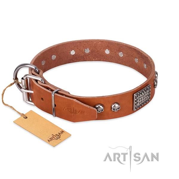 Strong hardware on everyday walking dog collar