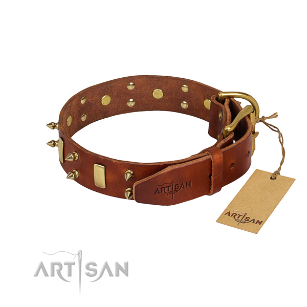 Daily use adorned dog collar of durable natural leather