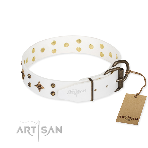 Basic training decorated dog collar of quality full grain leather