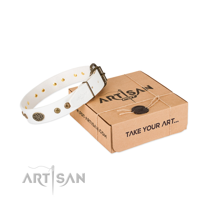Durable decorations on full grain leather dog collar for your pet