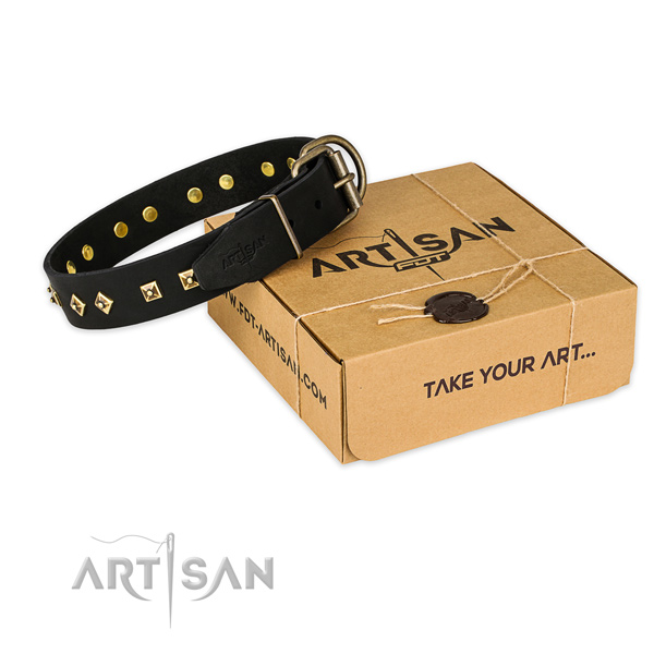 Reliable hardware on genuine leather collar for your attractive dog