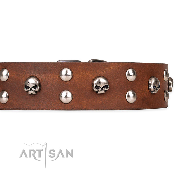 Comfy wearing adorned dog collar of durable genuine leather