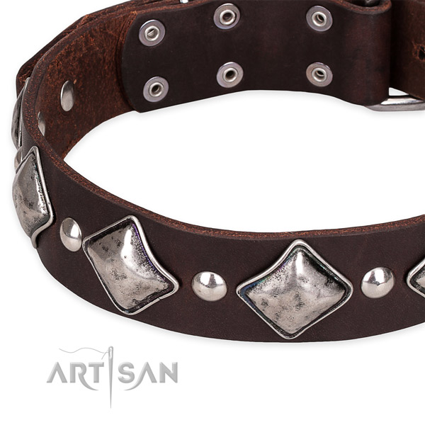 Comfortable wearing embellished dog collar of strong full grain leather