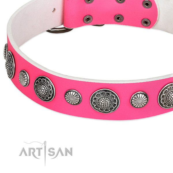 Full grain natural leather collar with durable fittings for your impressive doggie