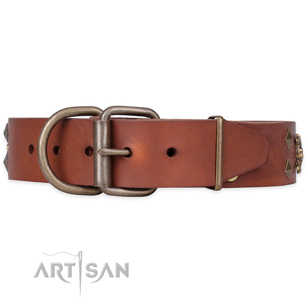 Everyday use adorned dog collar of top quality full grain leather