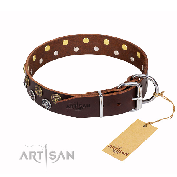 Walking adorned dog collar of best quality full grain genuine leather