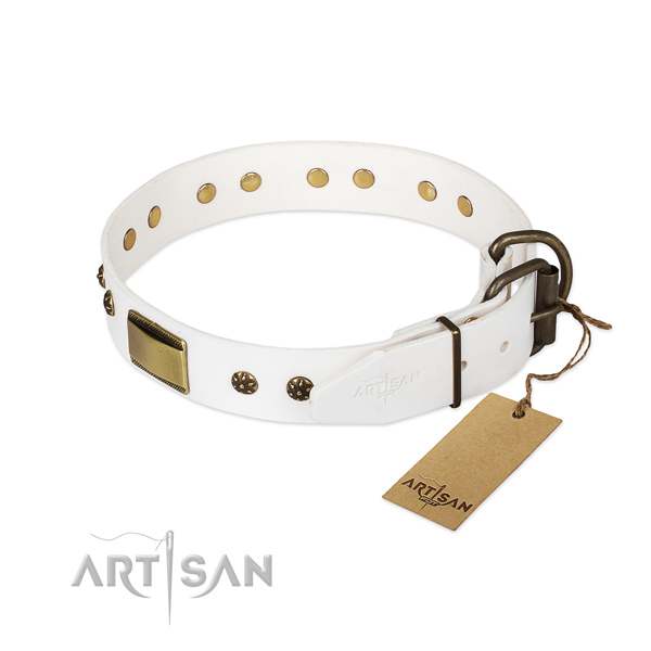 Full grain natural leather dog collar with durable D-ring and embellishments