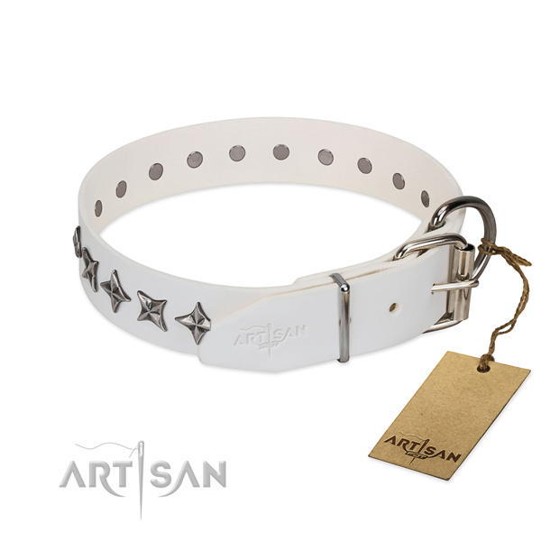 Finest quality natural leather dog collar with stunning decorations