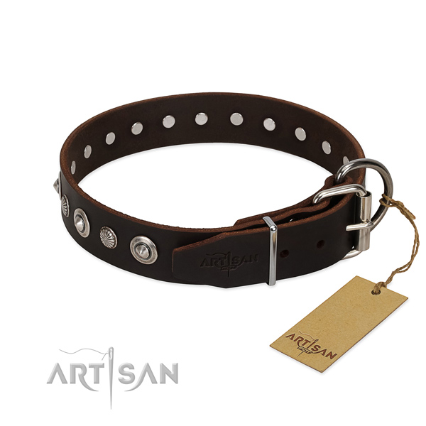 Top notch leather dog collar with awesome studs