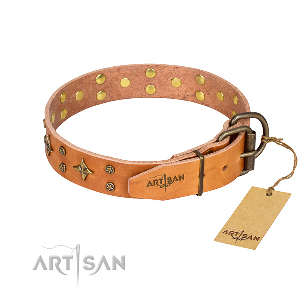 Walking adorned dog collar of best quality leather