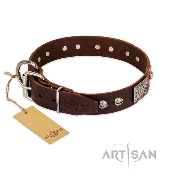 Corrosion proof adornments on daily walking dog collar