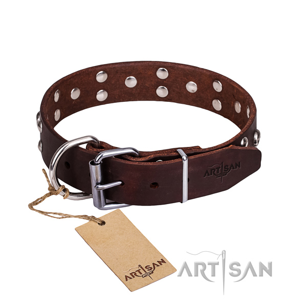 Daily use dog collar of high quality full grain leather with adornments