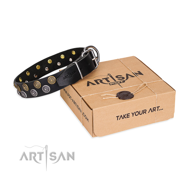 Daily walking dog collar of high quality genuine leather with studs