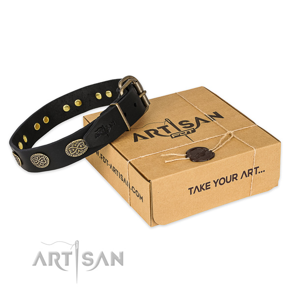 Corrosion resistant traditional buckle on full grain natural leather collar for your attractive four-legged friend