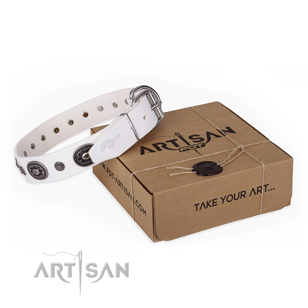 Flexible full grain natural leather dog collar handcrafted for fancy walking