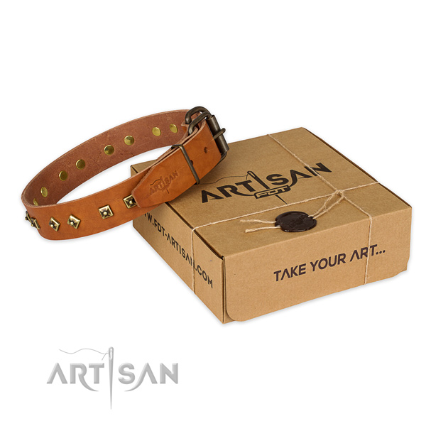 Reliable fittings on natural leather dog collar for handy use