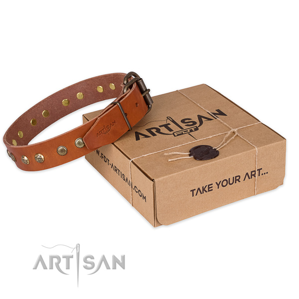 Reliable D-ring on full grain natural leather collar for your attractive canine