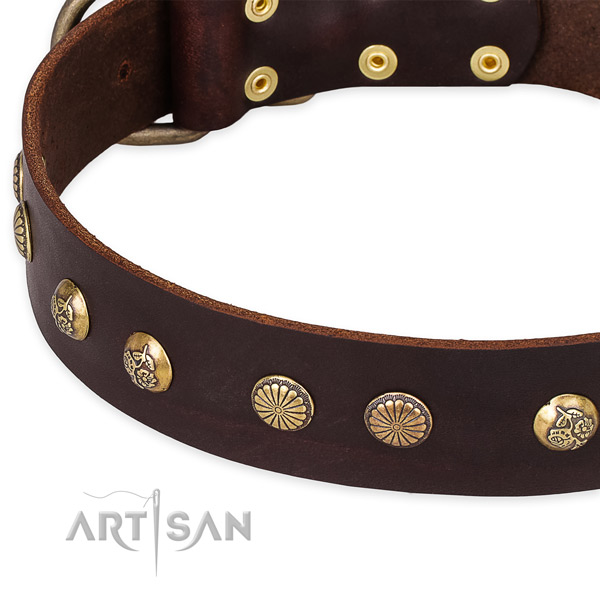 Full grain genuine leather collar with corrosion proof traditional buckle for your impressive doggie