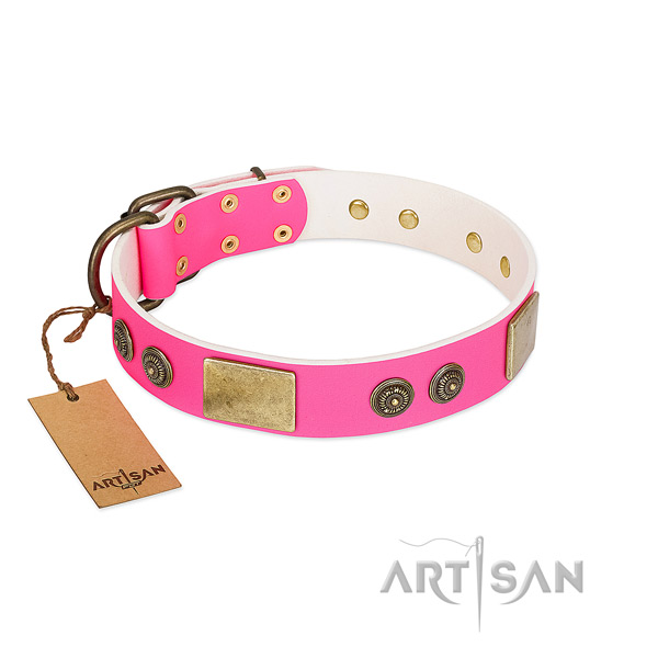 Best quality leather dog collar for fancy walking