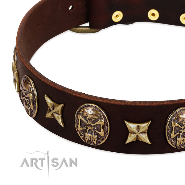 Durable studs on genuine leather dog collar for your doggie