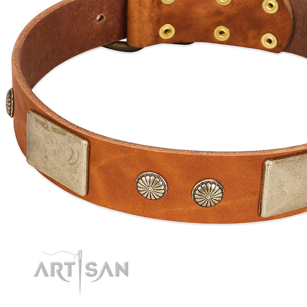 Rust-proof hardware on genuine leather dog collar for your doggie