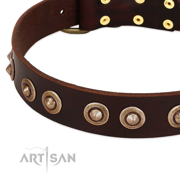 Reliable decorations on leather dog collar for your pet