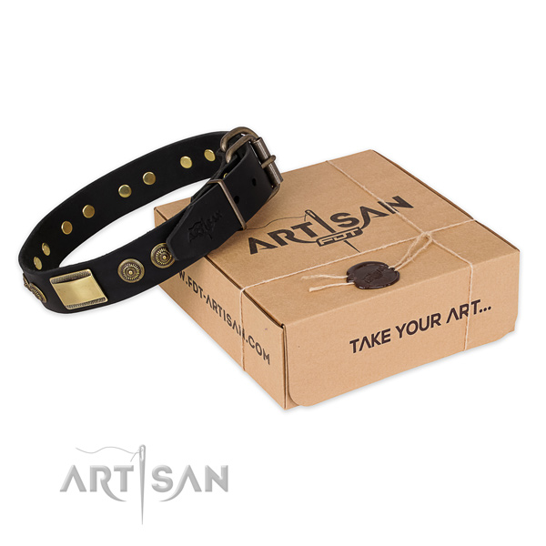 Corrosion resistant traditional buckle on full grain natural leather dog collar for comfortable wearing
