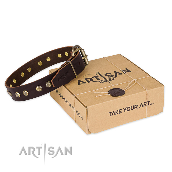 Corrosion proof fittings on natural genuine leather collar for your beautiful doggie
