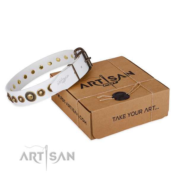 Top rate leather dog collar crafted for walking