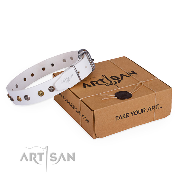Daily use dog collar with Trendy durable studs