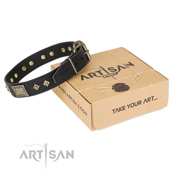 Significant full grain leather collar for your handsome canine