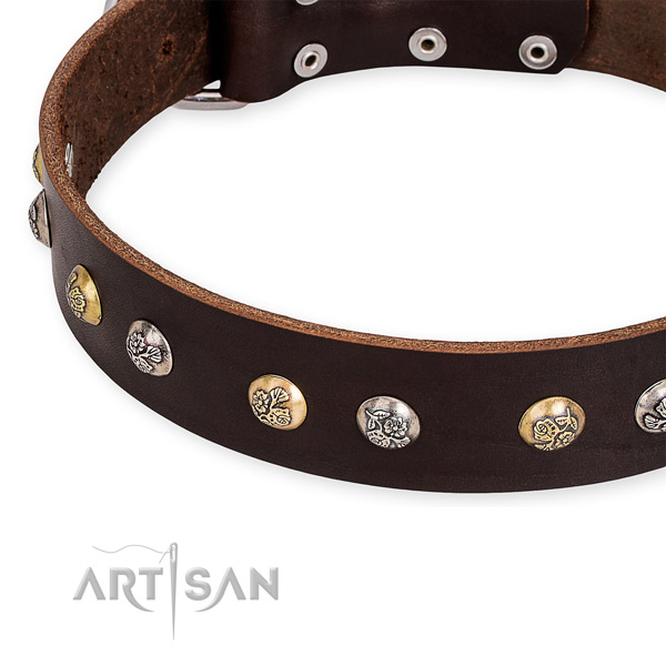 Full grain genuine leather dog collar with fashionable corrosion proof adornments