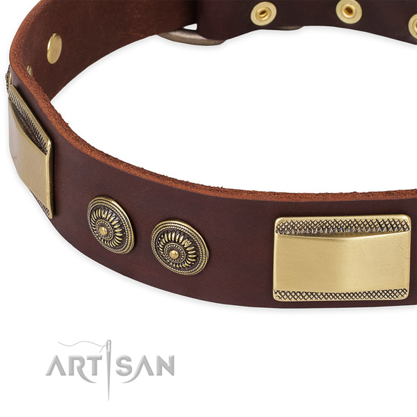Convenient full grain genuine leather collar for your stylish four-legged friend