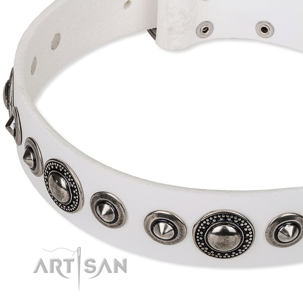 Handy use studded dog collar of finest quality full grain leather