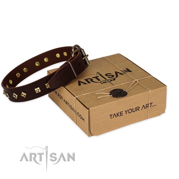 Rust-proof buckle on genuine leather dog collar for walking