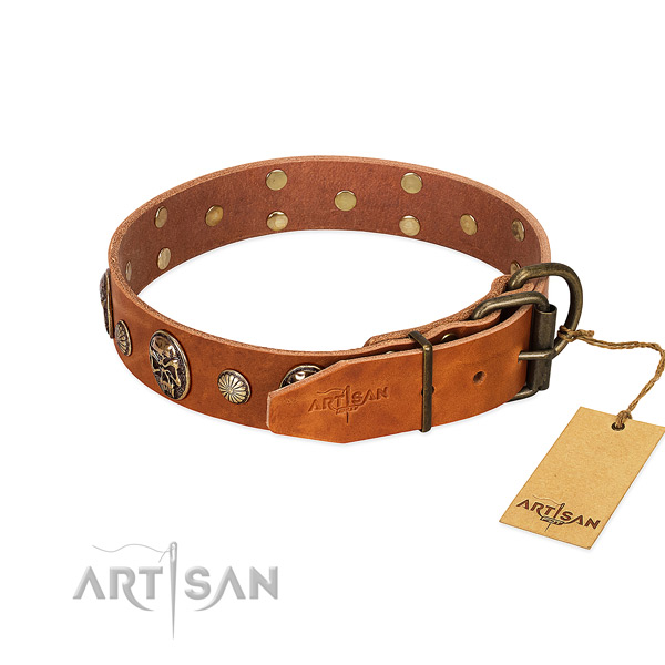 Durable traditional buckle on natural genuine leather collar for stylish walking your canine