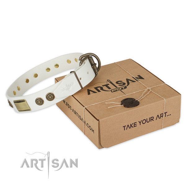 Durable D-ring on natural genuine leather dog collar for fancy walking