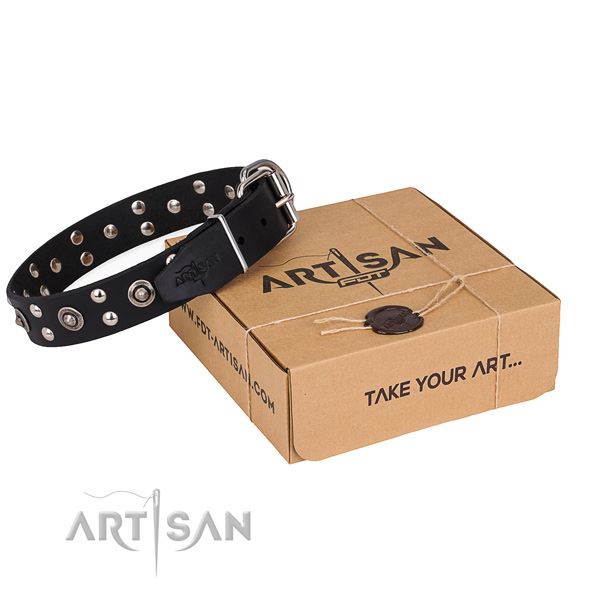 Stylish walking dog collar with Exceptional durable studs