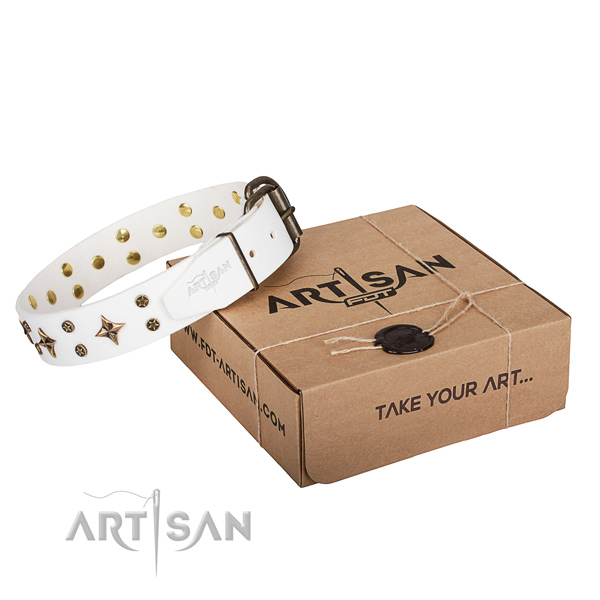 Stylish walking dog collar of durable full grain genuine leather with studs