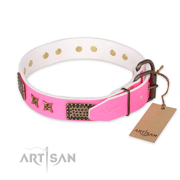 Reliable D-ring on genuine leather collar for your attractive pet