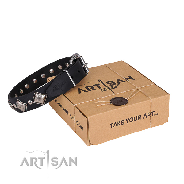 Daily walking dog collar of strong natural leather with decorations