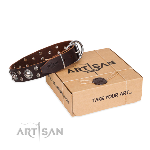 Daily use dog collar of high quality full grain natural leather with studs