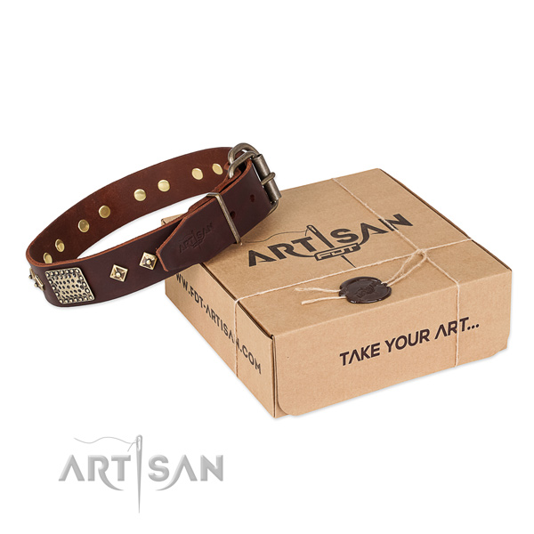 Incredible full grain natural leather collar for your lovely dog