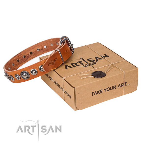 Full grain leather dog collar made of gentle to touch material with durable fittings