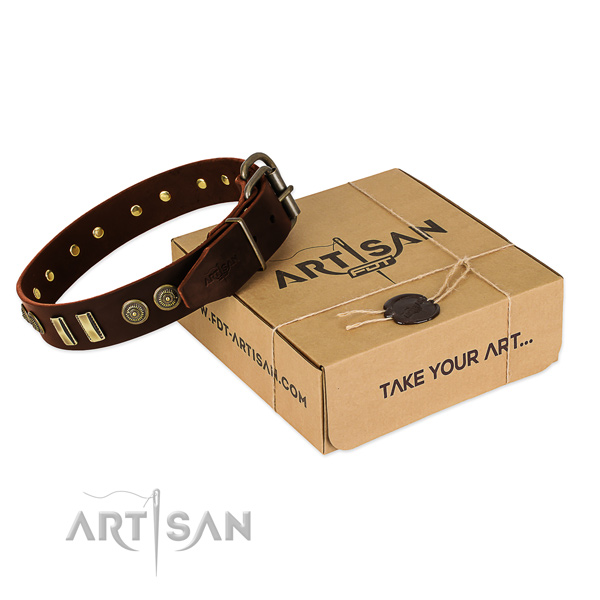 Rust resistant embellishments on full grain natural leather dog collar for your pet