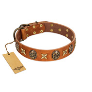 """Rockin' Doggie"" FDT Artisan Tan Leather dog Collar Adorned with Stars and Skulls"