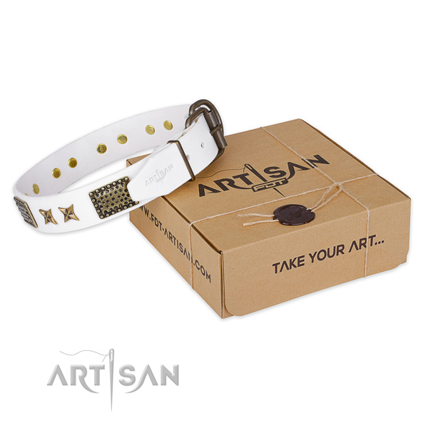 Strong traditional buckle on genuine leather collar for your lovely canine